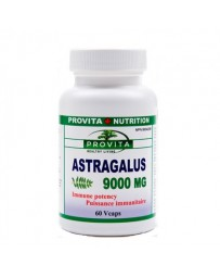 Astragalus 9000mg Forte 60cp